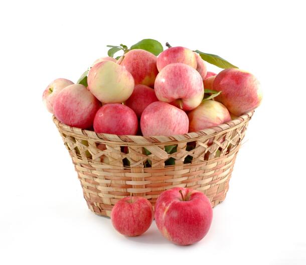 受けた仕事に埋もれてませんか?まずはリンゴをかじる事であなたの仕事は改善する